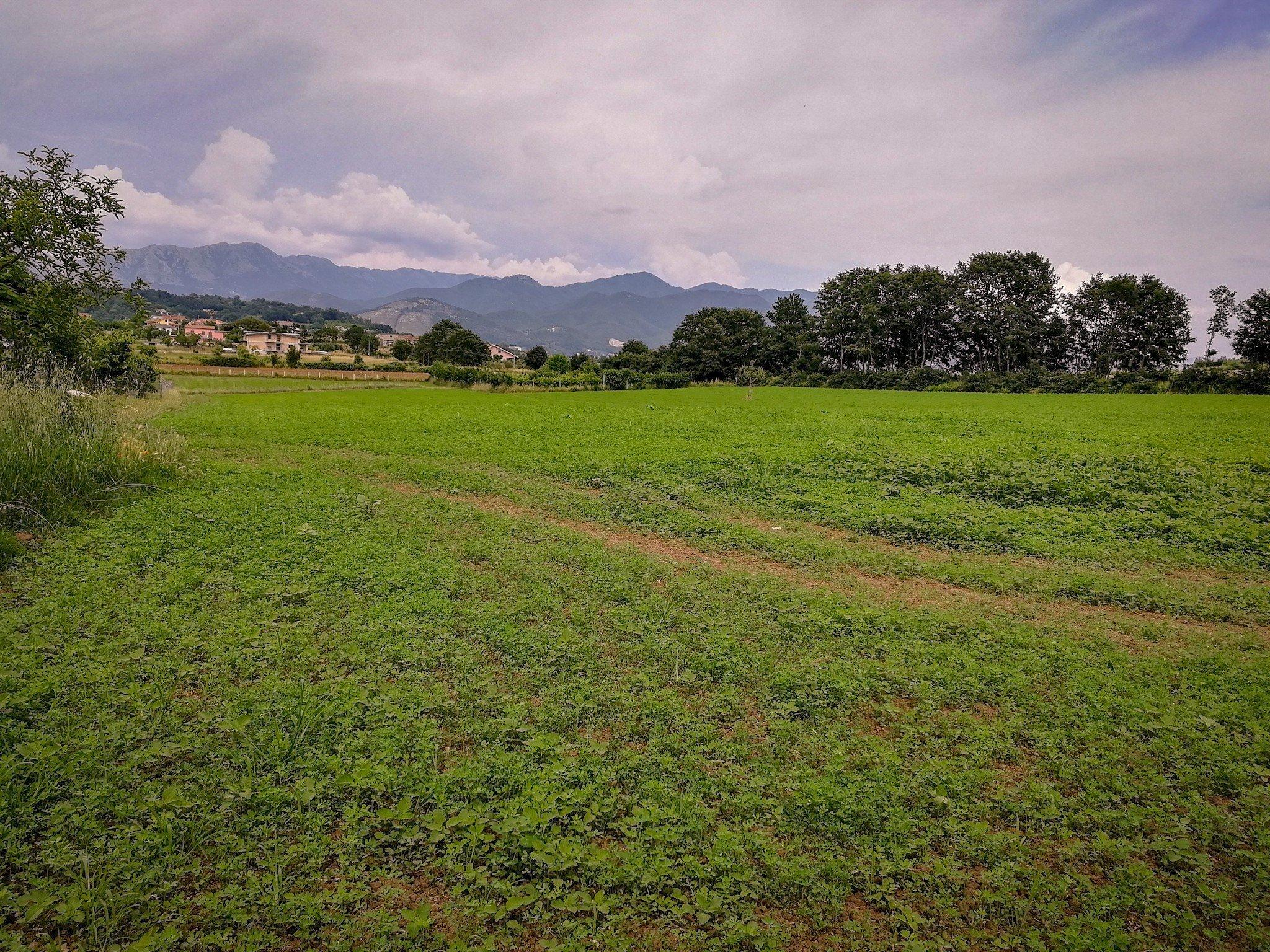 Terreno agricolo in vendita a Roccavecchia –  Pratella